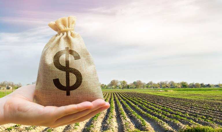 Crédito rural: Banco do Brasil libera R$ 16 bi para custeio antecipado