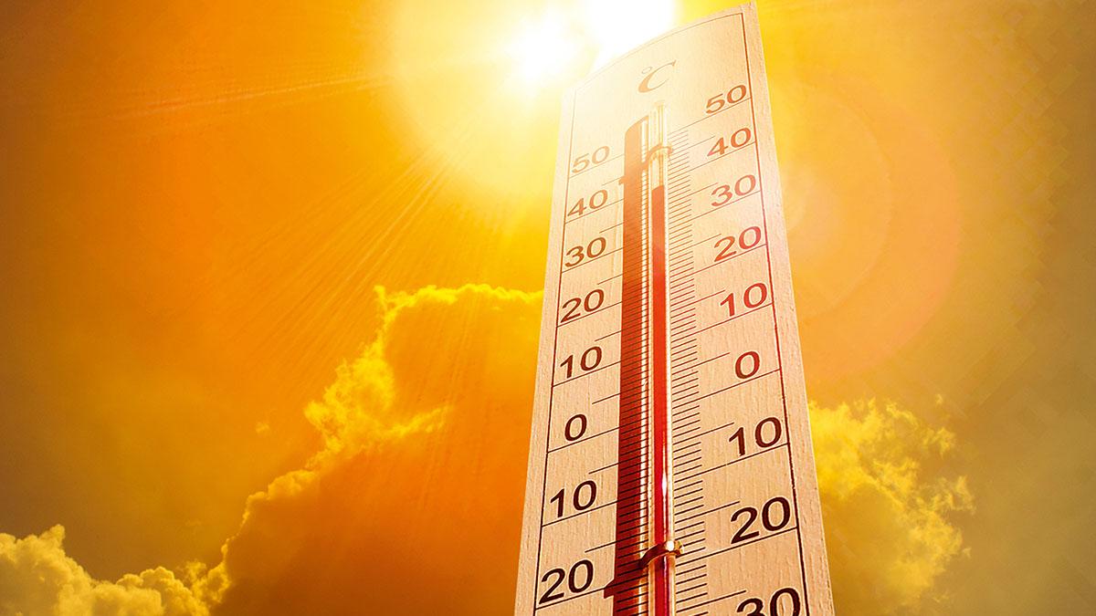Previsão do tempo indica muito calor e baixa possibilidade de chuvas para a semana no Território do Sisal